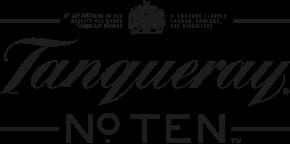T10-logo
